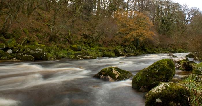 River Dart, Dartmeet