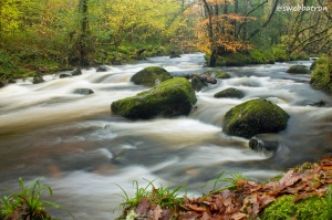 The River Teign