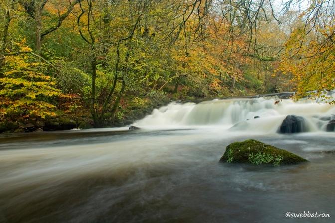 A Dartmoor Autumn