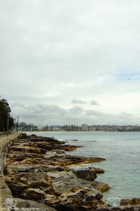 Manly from Shelly Beach