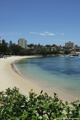 Manly Harbour/Wharf Beach.