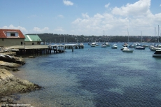 Manly Harbour.