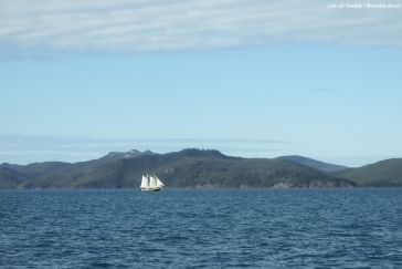Sailing Toward The Whitsundays
