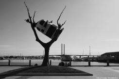 Cow In A Tree, Docklands, Melbourne