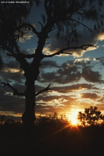 Sunset in the Red Centre