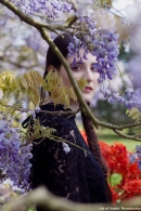 Gaby and the Wisteria